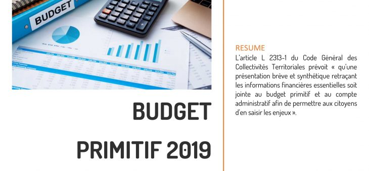 Budget prévisionnel 2019